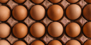 Build Traffic or Optimize for Conversions? A Chicken or Egg Debate