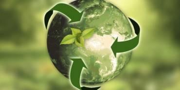 How Small Businesses Can Implement Sustainable Supply Chain Practices
